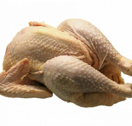 На что обратить внимание при покупке цыпленка-бройлера