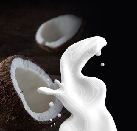 Как приготовить кокосовое молоко в домашних условиях