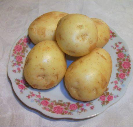Картофель – народный лекарь