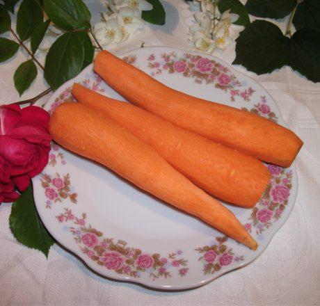 Морковь – оранжевый лекарь