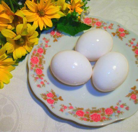 Куриные яйца – предмет вечных споров