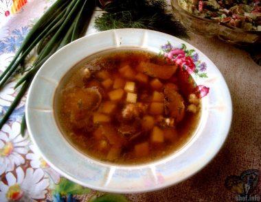 Крестьянский суп с сушеными лесными грибами
