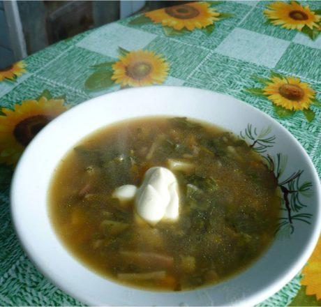 Суп с молодыми овощами и их ботвой