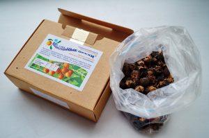 Мыльные орехи в коробочке