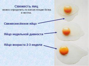 Определение свежести по белку