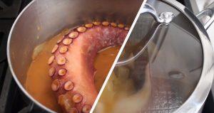 Испанский осьминог