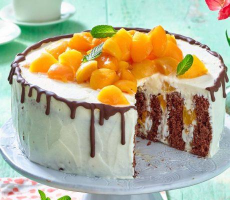 Спиральный творожный торт с абрикосами