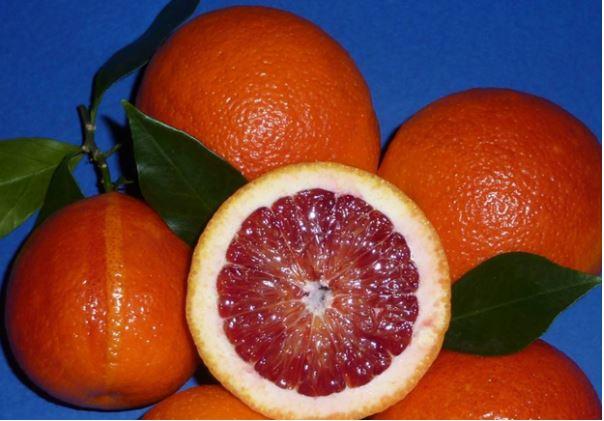 Моро апельсин