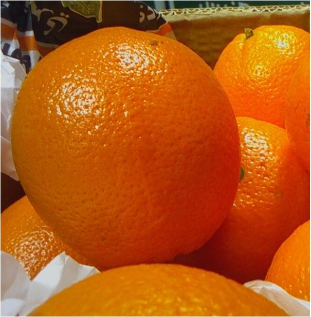 валенсия апельсин